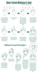 [HSV] Wakana Hair Guide by mandarain-a
