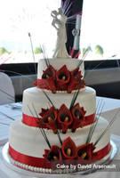 Canada Day Wedding by DavidArsenault