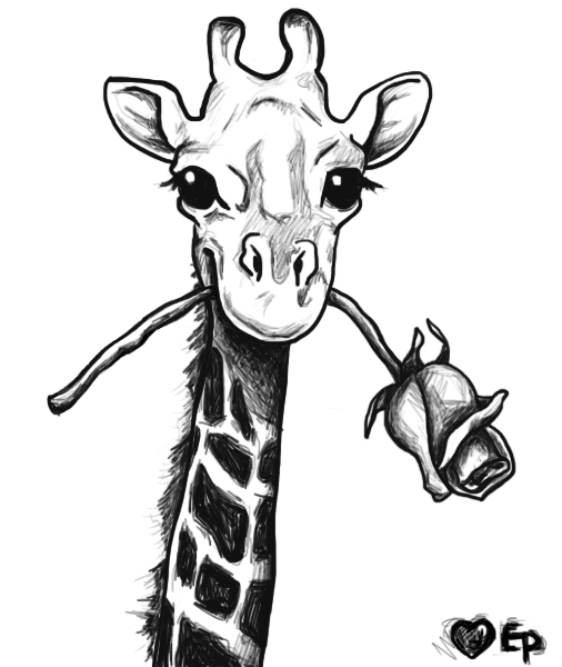 Line Drawing Baby Face : Giraffe by evxan on deviantart
