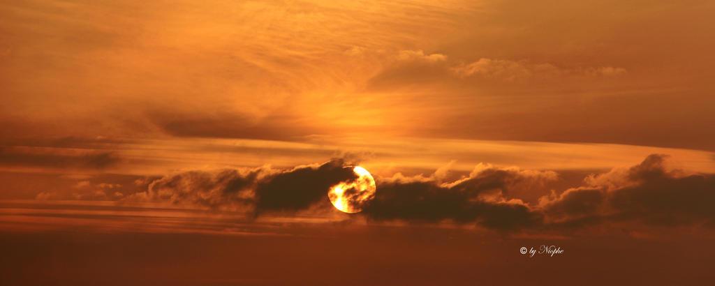 Golden Sunrise by Niophee