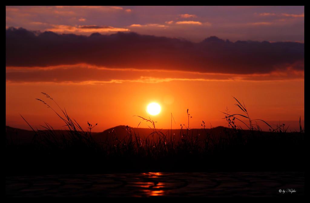 sunset glance by Niophee