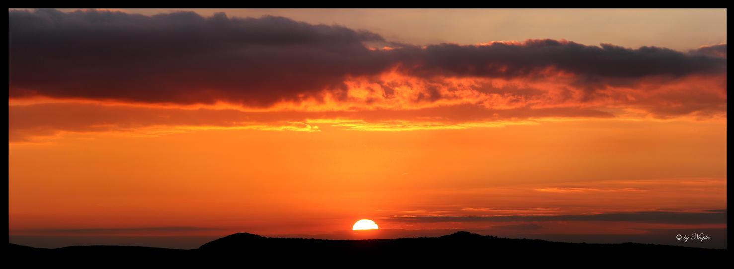 Golden Evening by Niophee