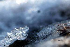 ice crust by Niophee