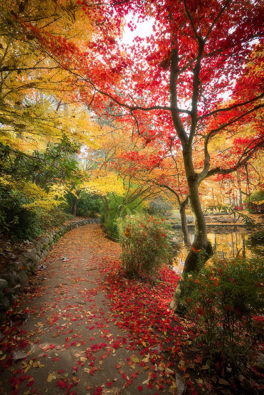 Autumn in Ashland by StevenDavisPhoto