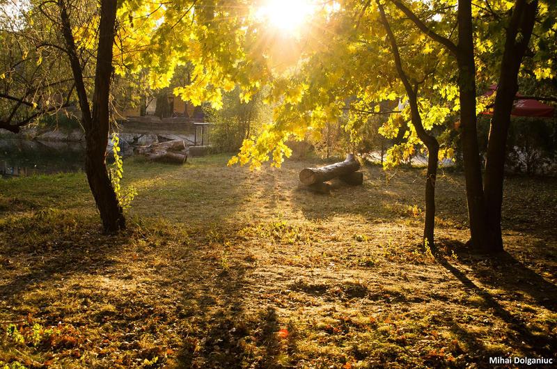 Autumn 6 by mishulika007