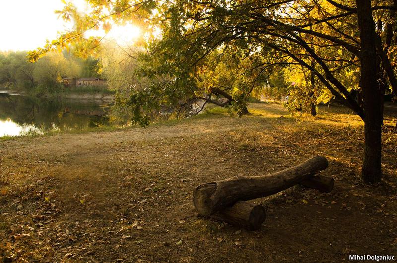 Autumn 7 by mishulika007