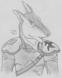 Commander Karshak the Masterful(Assault Armour) by Penguinking231