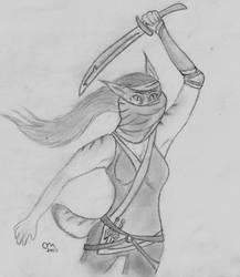Feline Ninja by Penguinking231