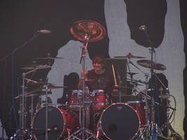Ray Luzier by lybar