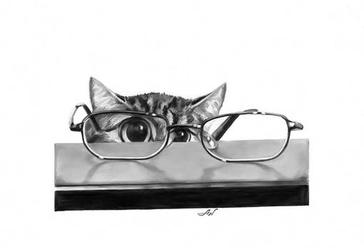 Cat and glasses.