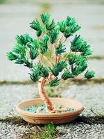 Maritime Pine by beads-poet