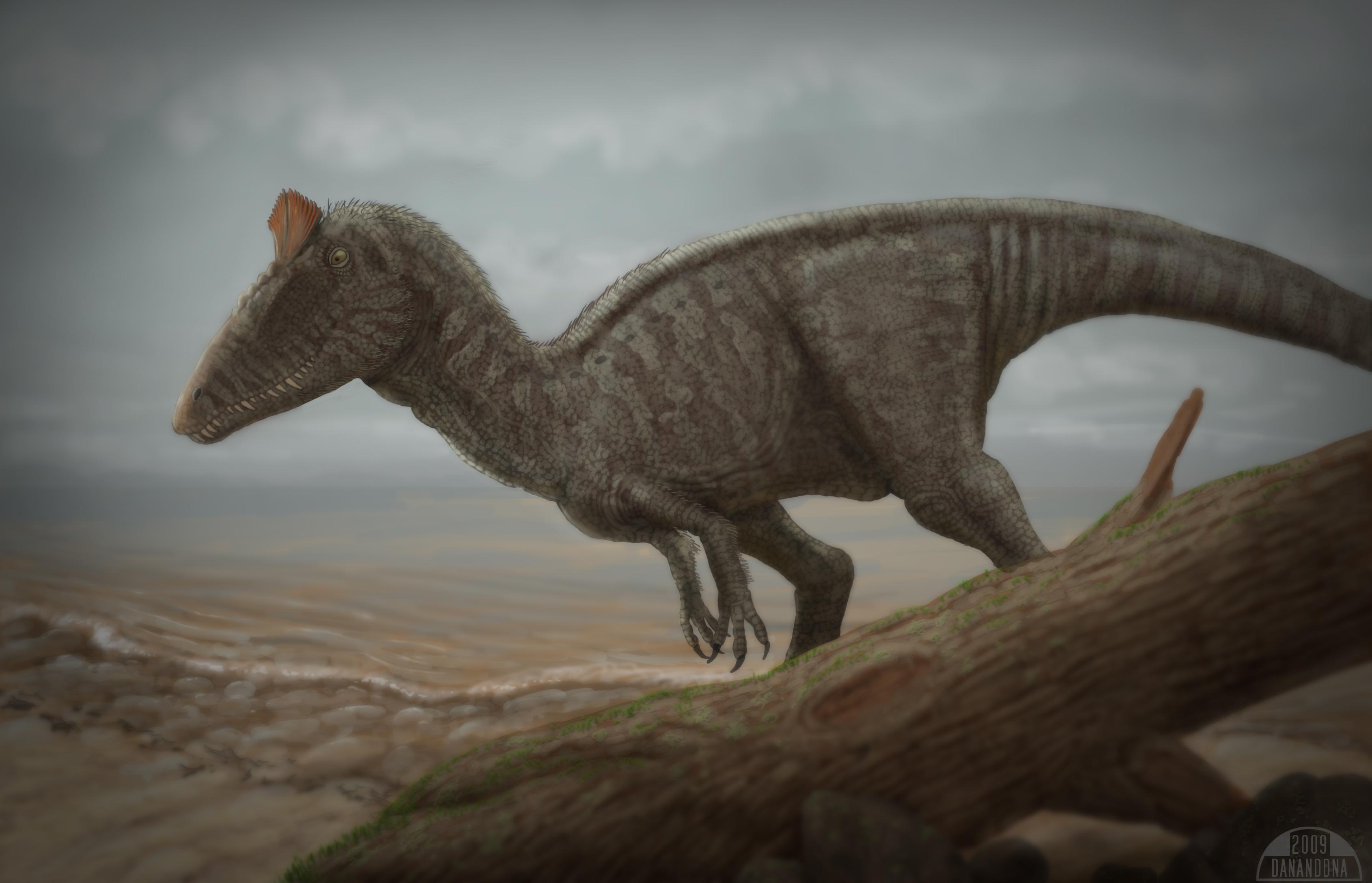 [Image: week_18___cryolophosaurus_by_sapien.jpg]