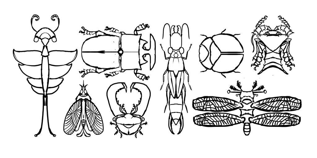 Fictional Bug Sketches - 2016 by danieljoelnewman