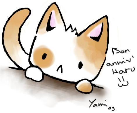 linus cat tips