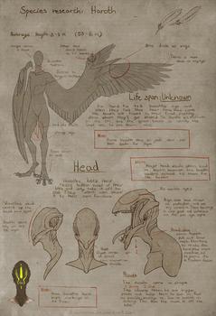 Haroth Species ref [p.1]