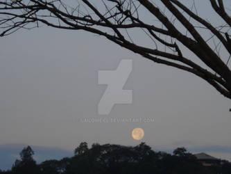 Moonset I