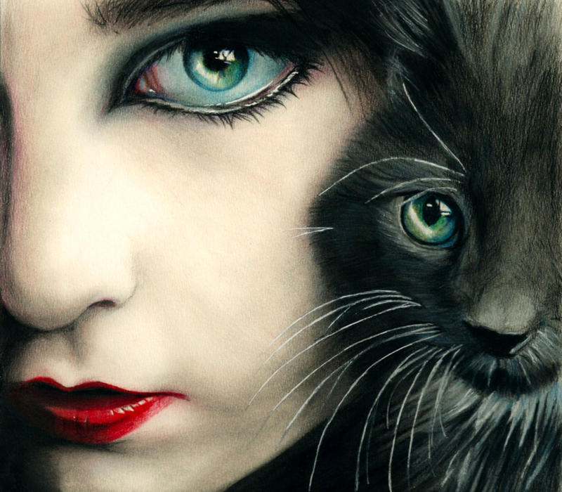 Feline by Briscott