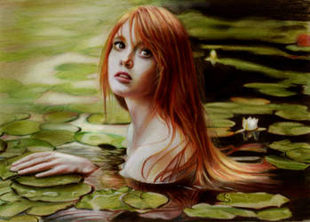 Lily by Briscott