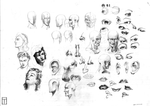 Loomis Head and Features Study