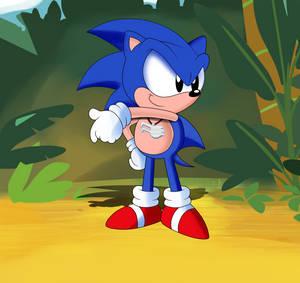 Sonic Underground Adventures test