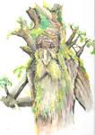 treebeard2