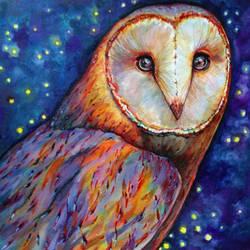 Barn Owl  by jyacini