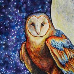 Barn owl at night by jyacini