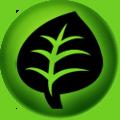 Grass type energy symbol
