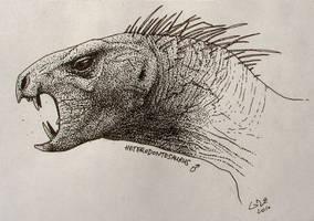 Heterodontosaurus Profile by commander-salamander