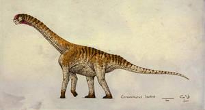 Camarasaurus lentus