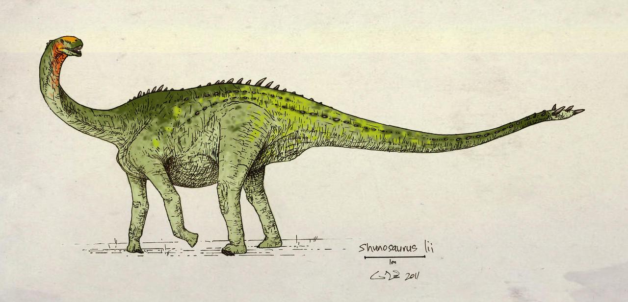 Shunosaurus lii