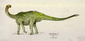 Shunosaurus lii by commander-salamander