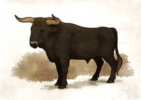Aurochs by commander-salamander