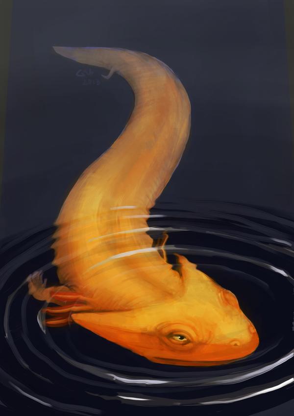 Golden Long Tad by commander-salamander