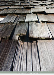 Unrestricted Texture - Wood Shingles 3