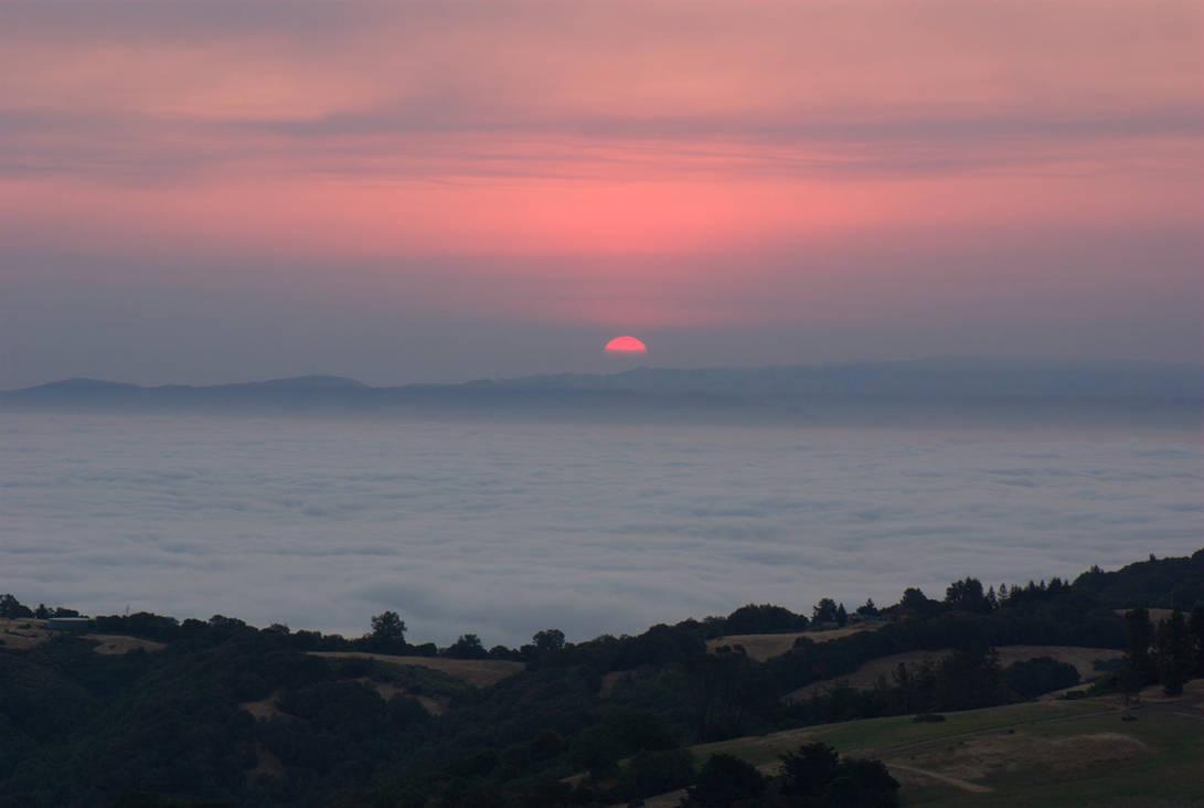 Martin Fire Sunrise by Yiffyfox
