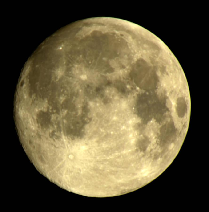 Moon by Yiffyfox