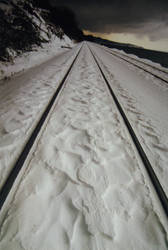 Snowy Tracks by Yiffyfox