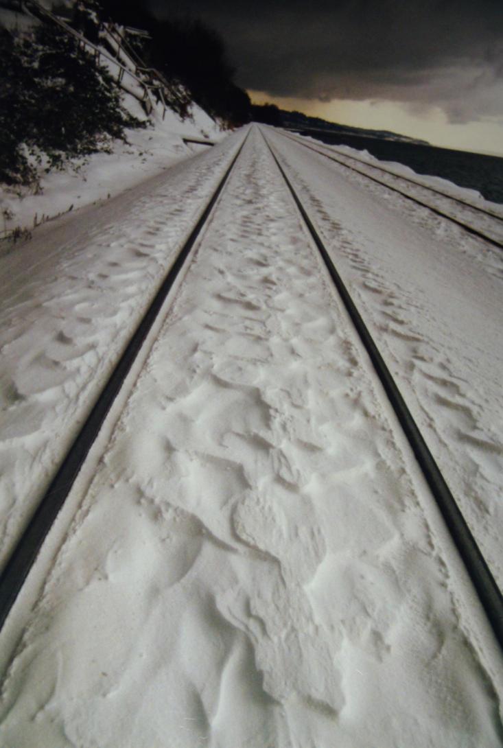 Snowy Tracks by Yiffyfox