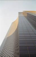 Looking Up at BoA by Yiffyfox