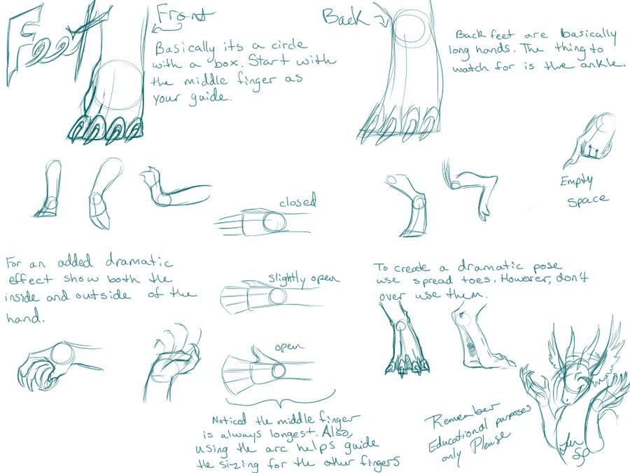 show how to draw dragon feet