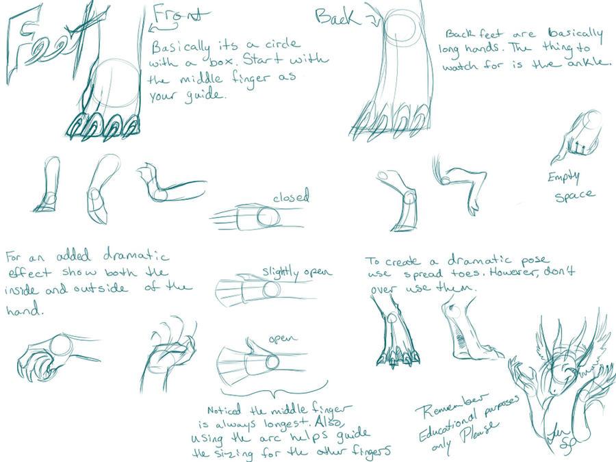 Dragon Hand-Foot Tutorial by NakaseArt on DeviantArt
