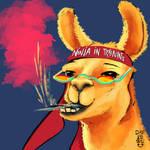 Llama by ChrissuChriss