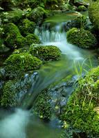 Little Green Creek by teflon
