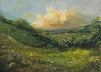Meadow under cloud