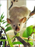 Mouse 2 by Eliwyn