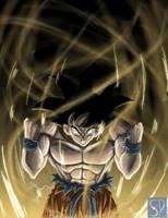 DBZ- Goku by Toonzy
