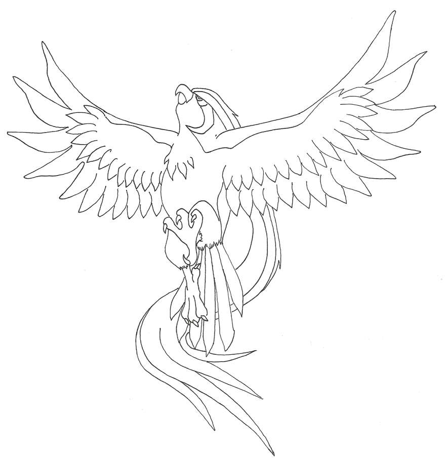 pidgeot pokemon coloring pages - photo#19