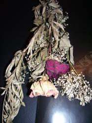 Dead Flower Stock 03
