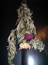 Dead Flower Stock 04